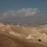 Miluji poušť...
