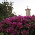 Hora Proměnění v Galileji