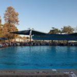 Bazén v kibucu Mizra