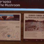 Návštěva Timna Parku byla úžasným zážitkem