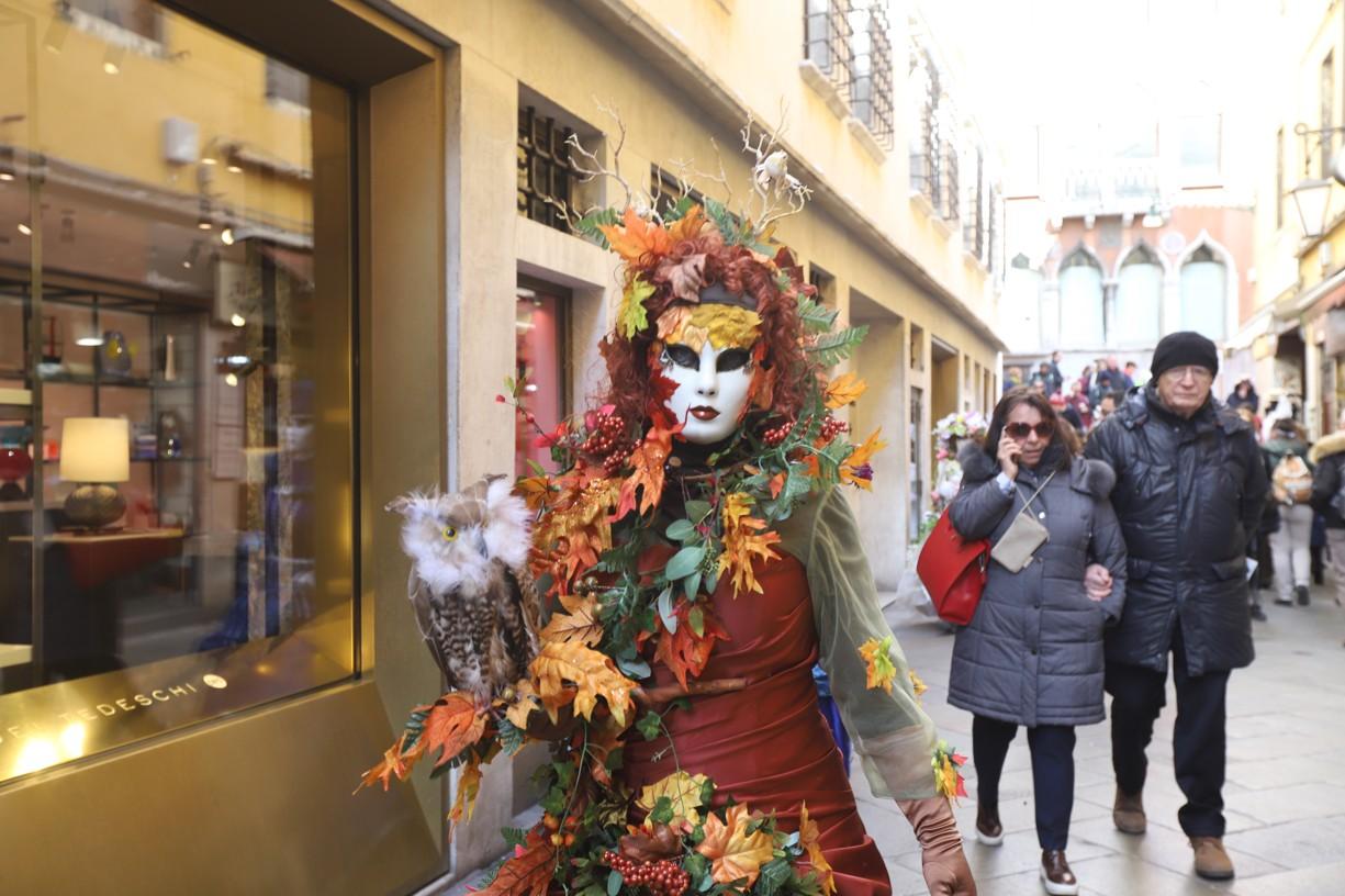 Lidé v kostýmech se při karnevalu pohybovali po celém městě