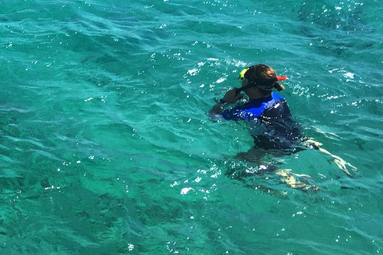 Šnorchlování na Coral Beach