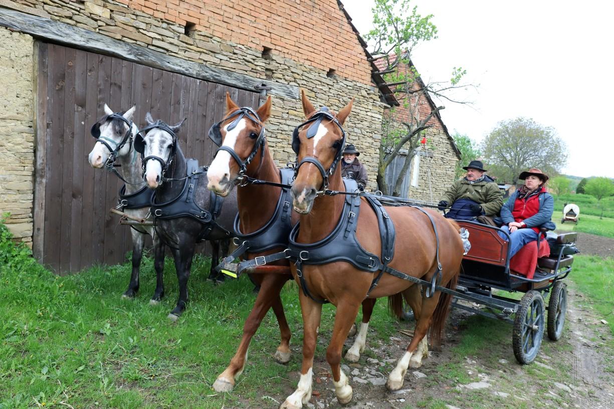 Koňské vozy vyjížděly od historických stodol v Hrubé Vrbce
