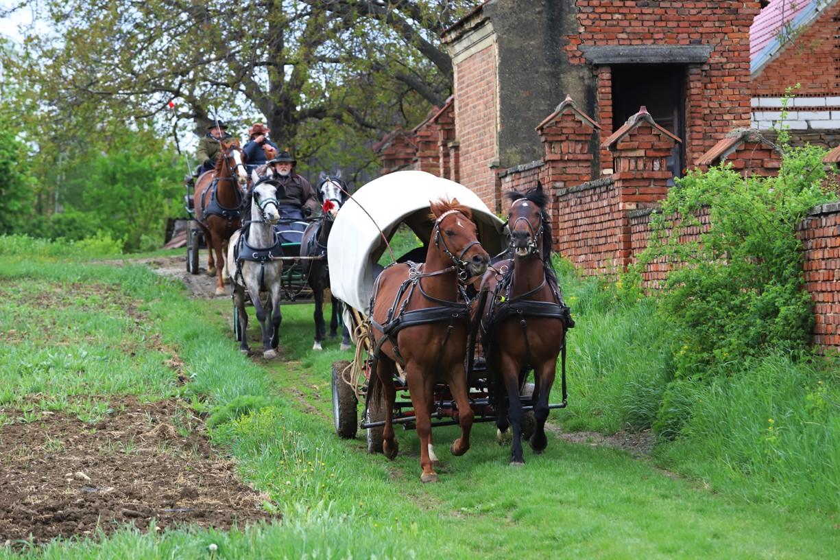 Koňské vozy se na cestu vydaly od historických stodol v Hrubé Vrbce
