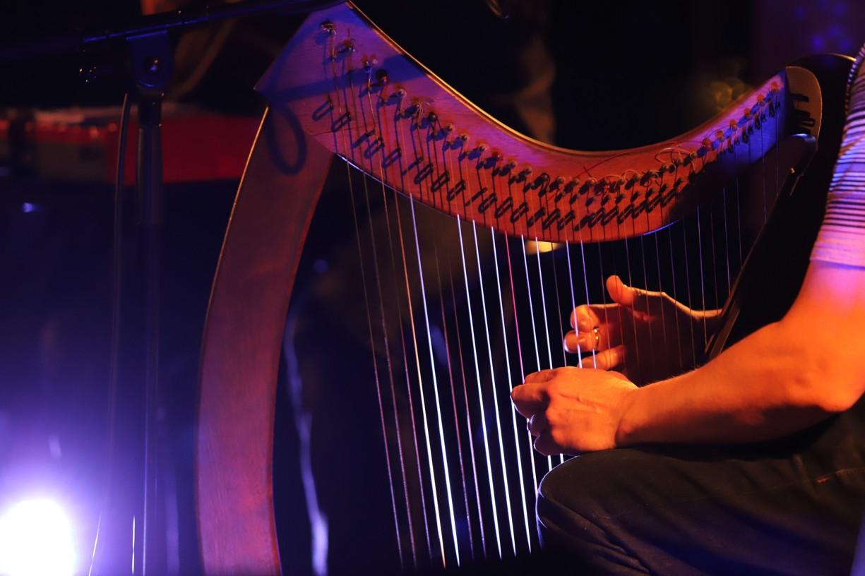 Ve Veselí zahrál i fenomenální hráč na keltskou harfu Sean Barry