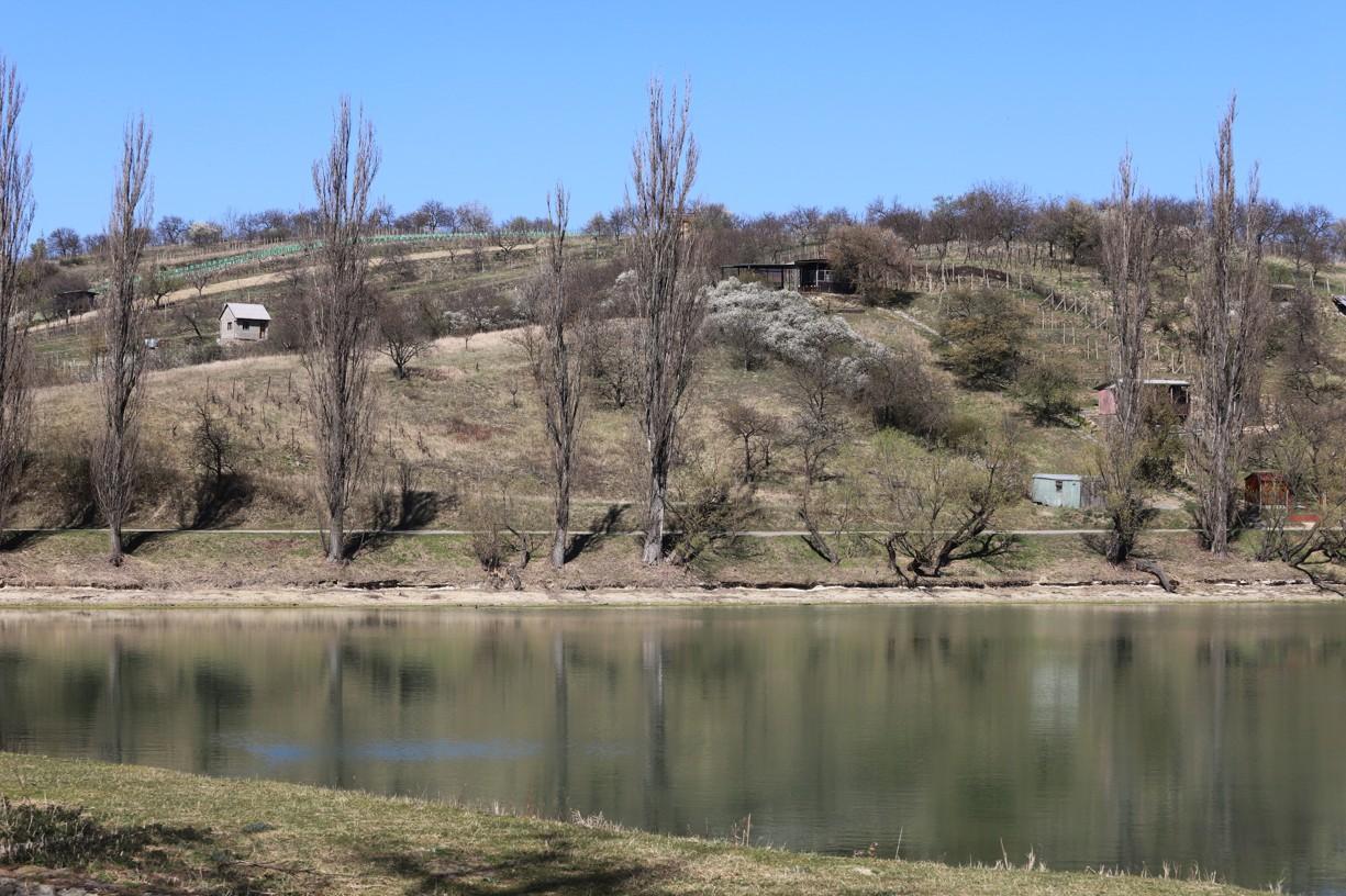 Cesta vedla okolo Předního rybníku.