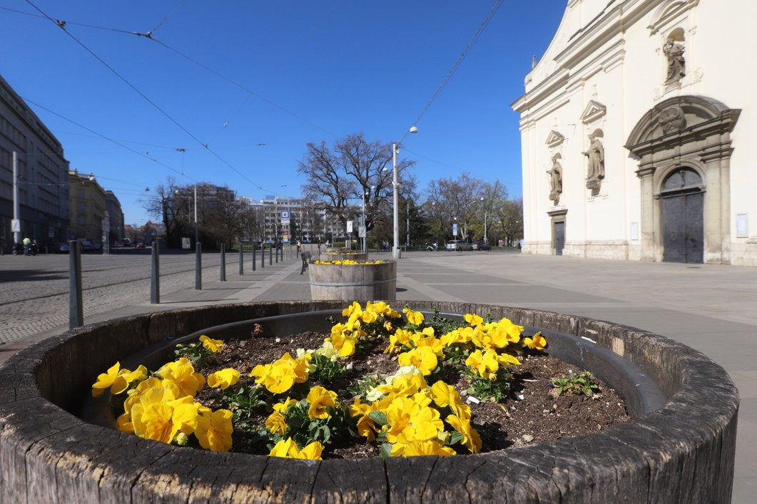 Moravské náměstí ve středu 8. dubna po třetí hodině odpoledne.