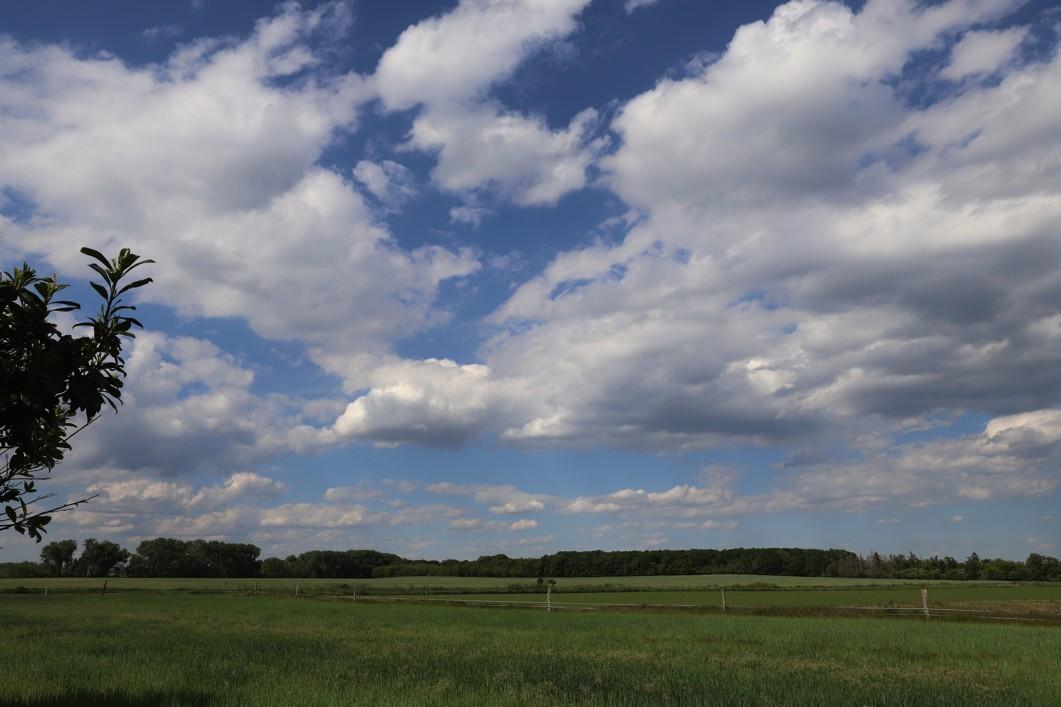 Krajina v okolí farmy by se někomu mohla zdát nudná, ale podle farmářky zde bývají nádherné východy slunce.