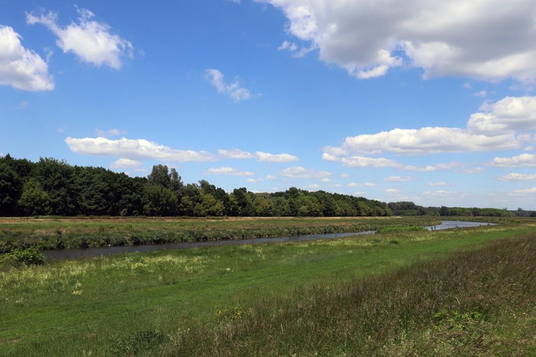 Pohled na krajinu ze slovenské strany řeky Moravy.