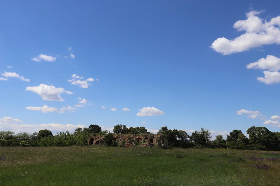 Kvetoucí louky na slovenské straně řeky Moravy. Vzadu je vidět ruina bývalé hájenky, kterou čeká oprava.