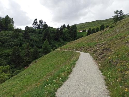 Procházka po květinové stezce Heidi, kterou známe z knihy Heidi děvčátko z hor - Heidi's blumenwegweg