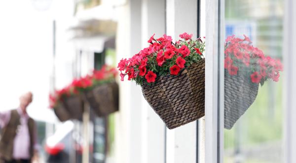 Květinová výzdoba v ulicích St. Moritz