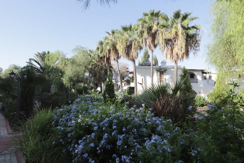 Bydleli jsme vlastně ubytovaní v malých domečcích jakoby v botanické zahradě